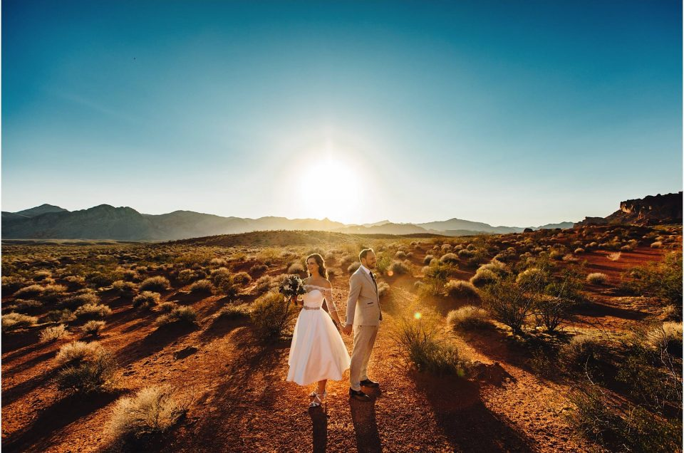 Las Vegas Valley Of Fire Wedding : Toni-Anne & Kevin