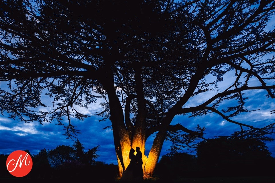 silhouette of bride & groom under a tree